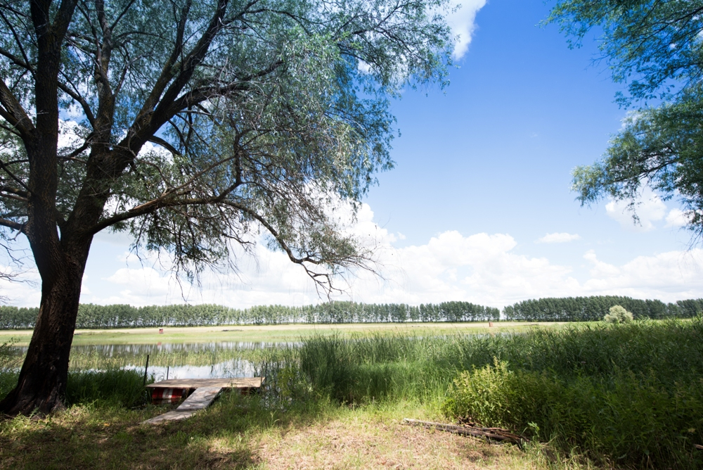 http://zelenovka-prud.ru/wp-content/uploads/2014/07/DSC_4321_1.jpg